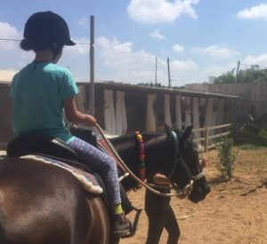 2018 11 19 15 24 37 קייטנת חנוכה רכיבה על סוסים בחווה של לאהנר בני ציון גרו גרופון