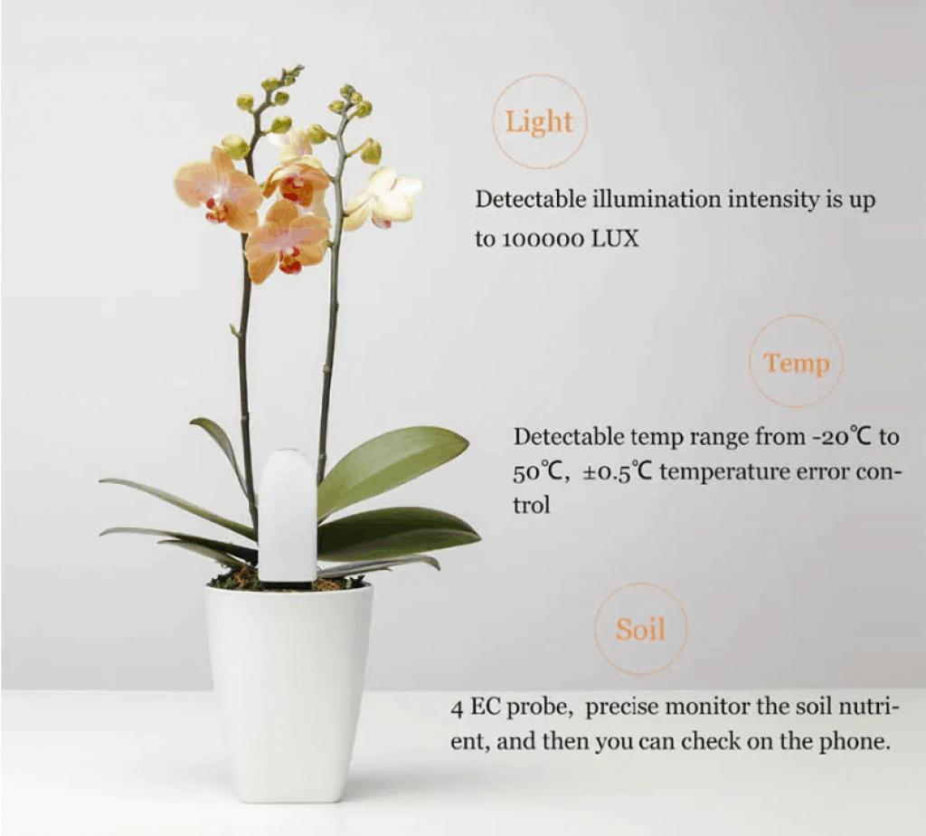 מנטר הצמחים והפרחים של שיאומי בזול זוזו דילס